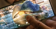 Samsung natočil ukázkové video z pražské zoo v rozlišení Ultra HD (8K)